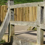 Bridge mortice and tenon with pegs detail